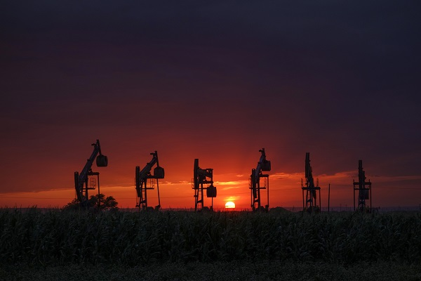 油区 张晋国.jpg